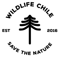 Wildlife Chile: fotografías que reforestan